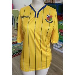 Retro Wealdstone FC Yellow Away Shirt 2016-17