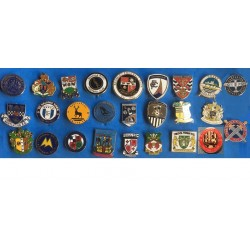 NATIONAL LEAGUE CLUB BADGES 2020 - 2021